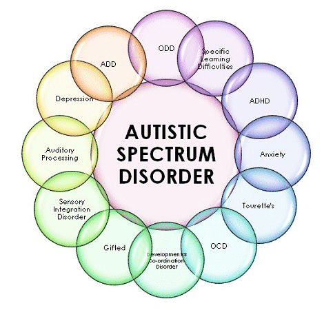 Autism Doctor in Hyderabad: What He will Do?