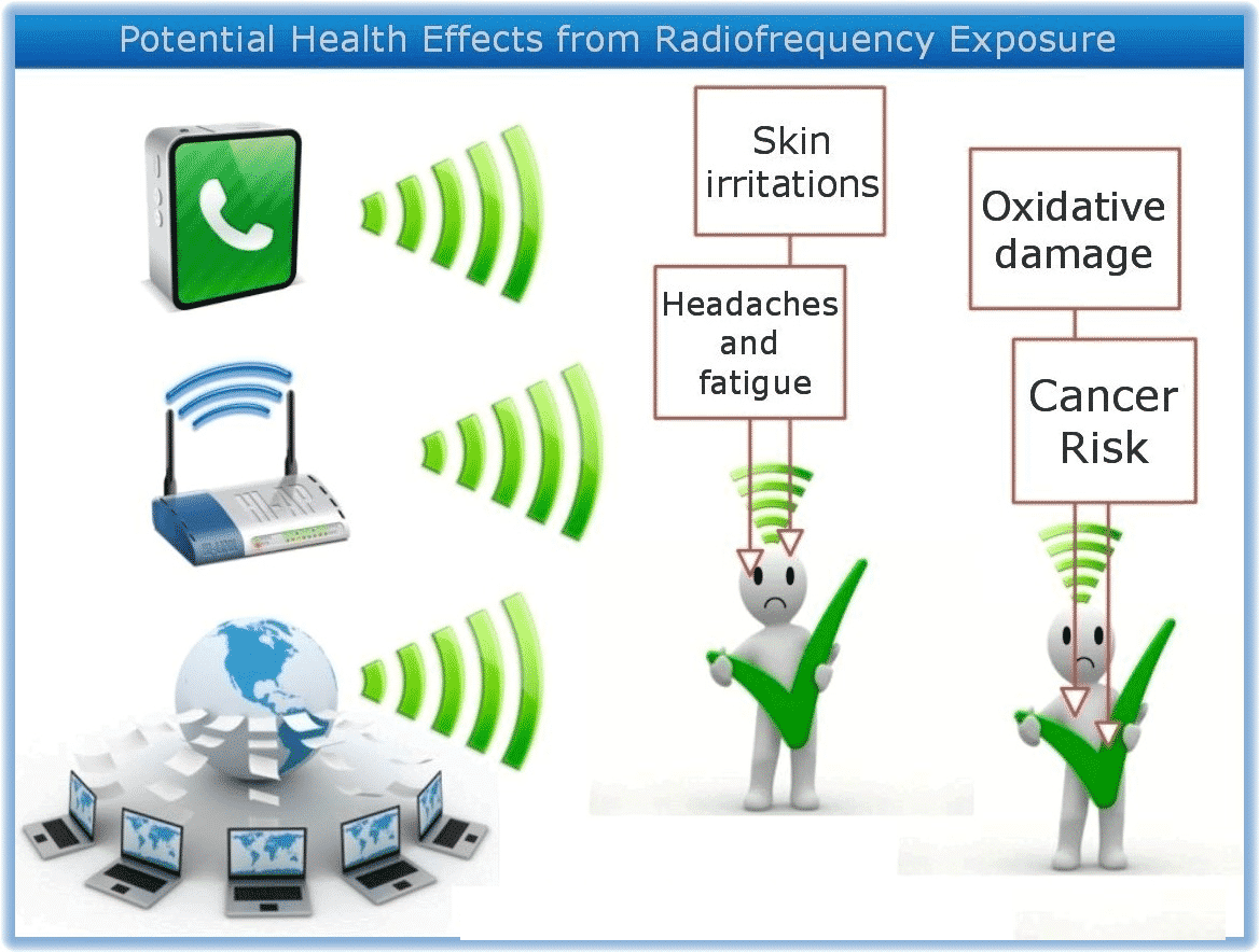 Wireless Radiofrequency Radiation In Schools